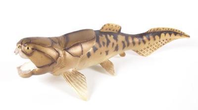 Dunkleosteus, model;Dunkleosteus, model