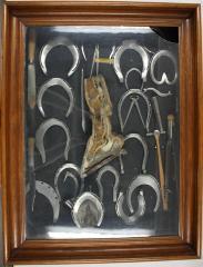 Horseshoe Exhibit Display Case
