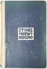 Book, The New Negro: An Interpretation