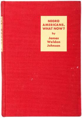 Book, Negro Americans, What Now?