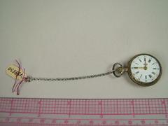 Small Pocket Watch