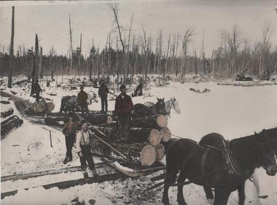 Photograph, Horse Drawn Logging Sled