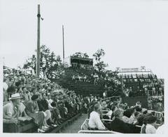 Photograph, Crowd In Stands At Grand Rapids Chicks Baseball Game, All-American Girls Baseball League Archival Collection #66
