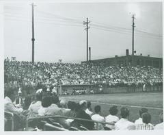 Photograph, Dugout And Crowd In Stands At South Field, Grand Rapids Chicks Baseball Game, All-American Girls Baseball League Archival Collection #66