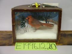 Cardinal, School Loan Collection