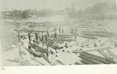Photograph, Log Drive On The Muskegon River
