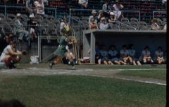 Slide,  Fern Shellenberger, All-American Girls Professional Baseball