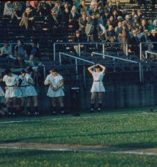 Slide, Grand Rapids Chicks Dugout, All-American Girls Professional Baseball