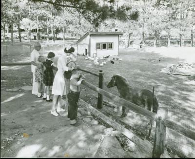 Photograph, Pine Rest Nurses at a Farm