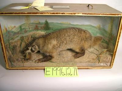 Badger, School Loan Collection