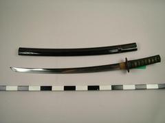 Sword (japanese Short Sword)